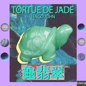 tortue de jade album